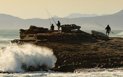 Gansbaai accommodation, a lone fisherman and a colony of Geese